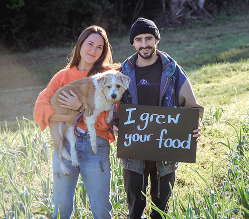 Your Food Collective_brief_499x439 copy