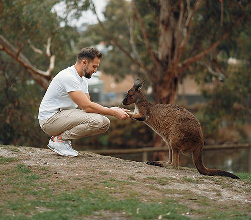 Australian Wildlife Conservancy Project Brief