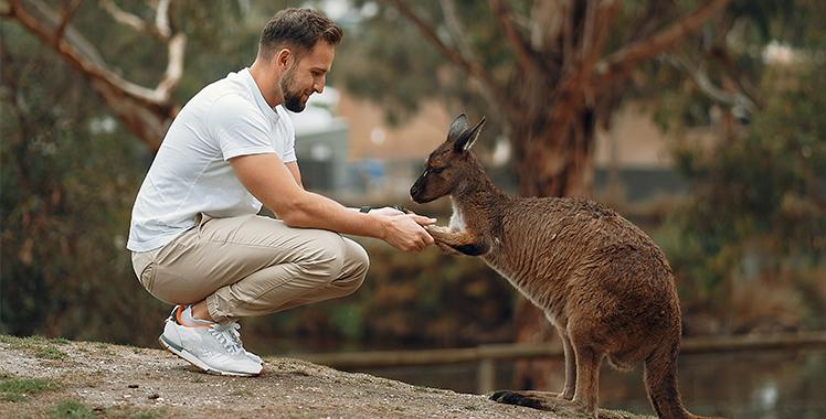 Australian Wildlife Conservancy Project Icon